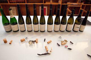 Weingut Loimer - Kamptal Österreich 2018