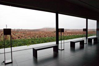Pago de los Capellanes - Ribera del Duero 2015